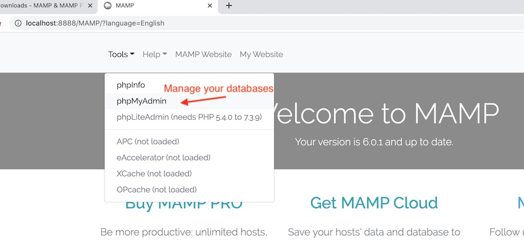 Link to manage your databases